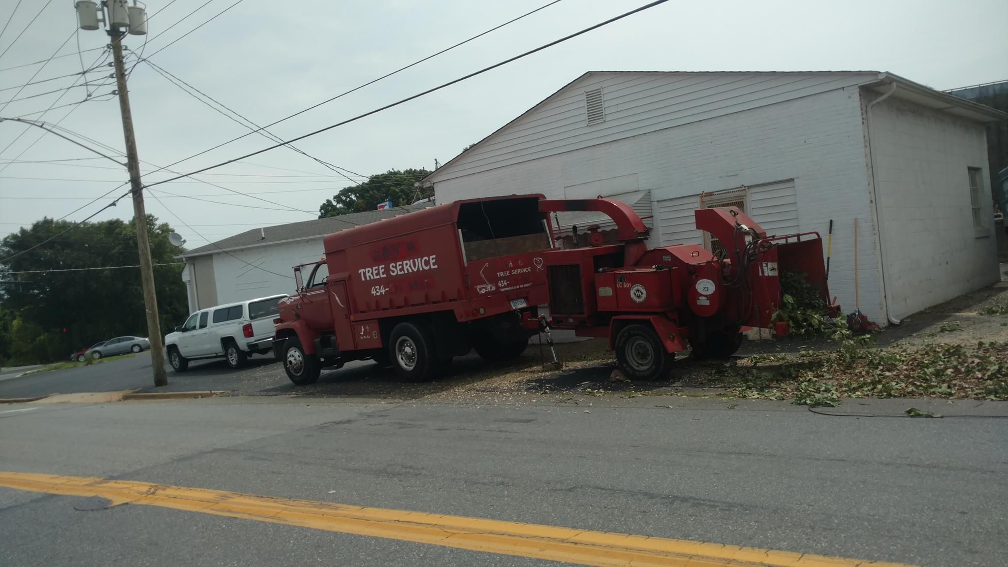 Lynchburg-VA-tree-services