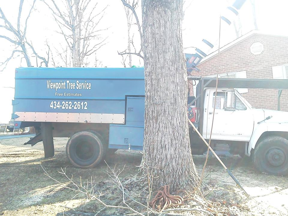 Lynchburg-tree-services